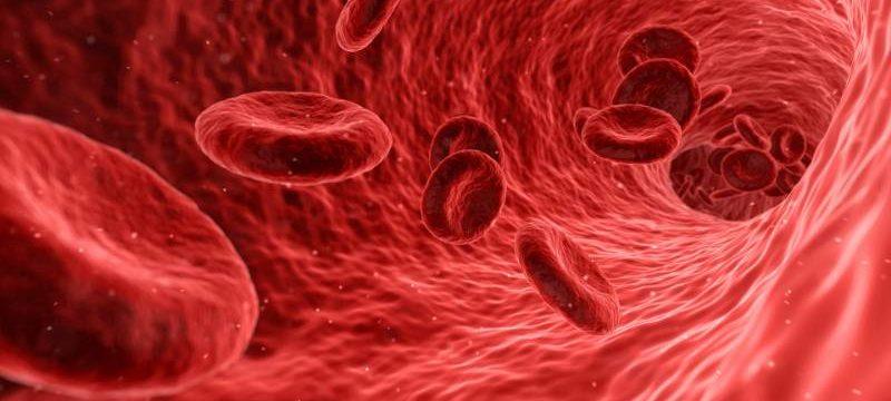 Sangue nelle feci, quali sono le cause più comuni e quali i possibili rimedi?